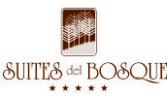 logo suite web